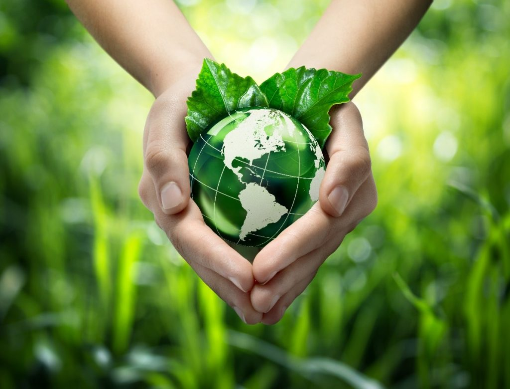 A pair of hands holding a green globe